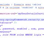 IMG/png/tutoriel_spring_objis_securite_19.png