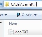 IMG/png/dev-camel-simple-2.png