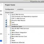 facet JSF 2.1 de l'application