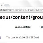 IMG/png/maven-nexus-empty.png