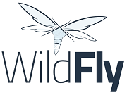 logo-wildfly.png