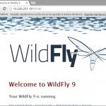 integration-apache-mod-jk-Wildfly-loadbalancer-8